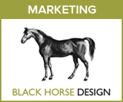 Black Horse Design Marketing (Manchester Horse)