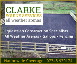 Clarke Equine Services 2020 (Manchester Horse)