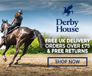 Derby House 2017 (Manchester Horse)