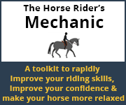The Horse Rider's Mechanic 01 (Manchester Horse)