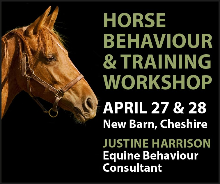 Justine Harrison Workshop April 2019 (Manchester Horse)