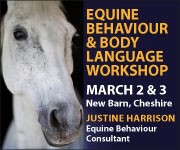Justine Harrison Workshop March 2019 (Manchester Horse)