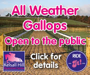 Kelsall Hill Gallops (Manchester Horse)