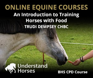 UH - An Introduction To Training Horses With Food (Manchester Horse)