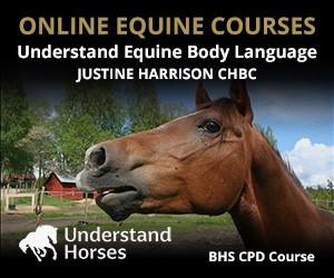 UH - Understand Equine Body Language (Manchester Horse)