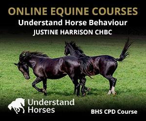 UH - Understand Horse Behaviour (Manchester Horse)