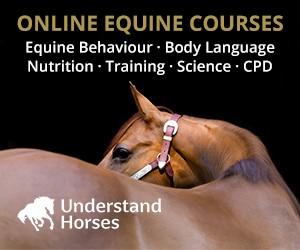 Understand Horses (Manchester Horse)